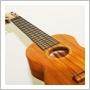 img_ukulele